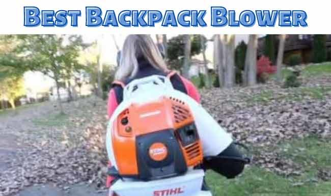 Best Backpack Blower