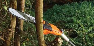 Black and Decker Pole Saw Review