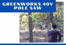 Greenworks 40V Pole Saw
