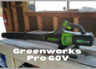 Greenworks Pro 60V